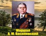 Маршал А. М. Василевский